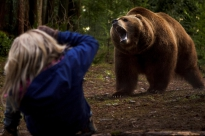 grizzly_2014_pic01.jpg