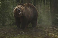 grizzly_2014_pic04.jpg