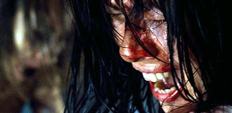 Martyrs,Pascal Laugier picture