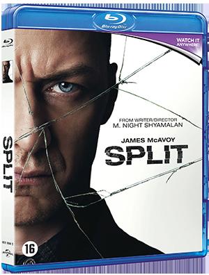 split_2016_poster.jpg