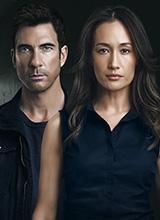 stalker_tv-series_poster2.jpg
