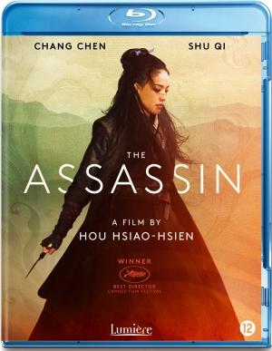 hsiao-hsien hou,the assassin,qi shu,crouching tiger hidden dragon