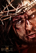 son of god,diogo morgado,the bible,the passion of the christ,paul knops,darcie lincoln,david rintoul,gary oliver,william houston,langley kirkwood,mohamen mehdi ouazanni,christopher spencer,amber rose revah,adrian schiller,roma downey,mark burnett,noah,exodus gods and kings