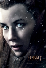 the_hobbit_the_battle_of_the_five_armies_2014_poster07.jpg
