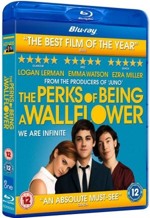 The Perks of Being a Wallflower,Emma Watson,Logan Lerman,Ezra Miller,Stephen Chbosky,Garden State,American Beauty