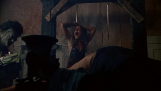 the_texas_chain_saw_massacre_1974_blu-ray_pic04.jpg