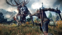 the_witcher_3_wild_hunt_2015_ps4_pic01.jpg