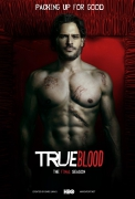 true_blood_season_7_poster02_joe_manganiello_alcide_herveaux.jpg